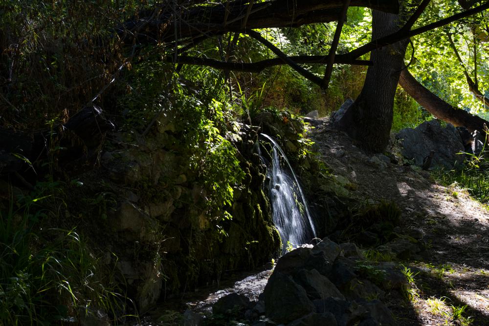 Las fuentes que se forman en los riachuelos del cauce del río Guadalentín a su paso por el Paraje natural de Peralta, situado en el término municipal de Pozo Alcón en la provincia de Jaén(España), nos ofecen una vista y un sonido que nos transporta a un mundo de tranquilidad y sosiego.